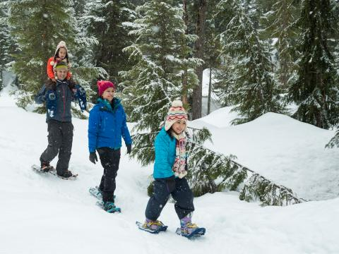 Family Snowshoeing at Whistler Olympic Park